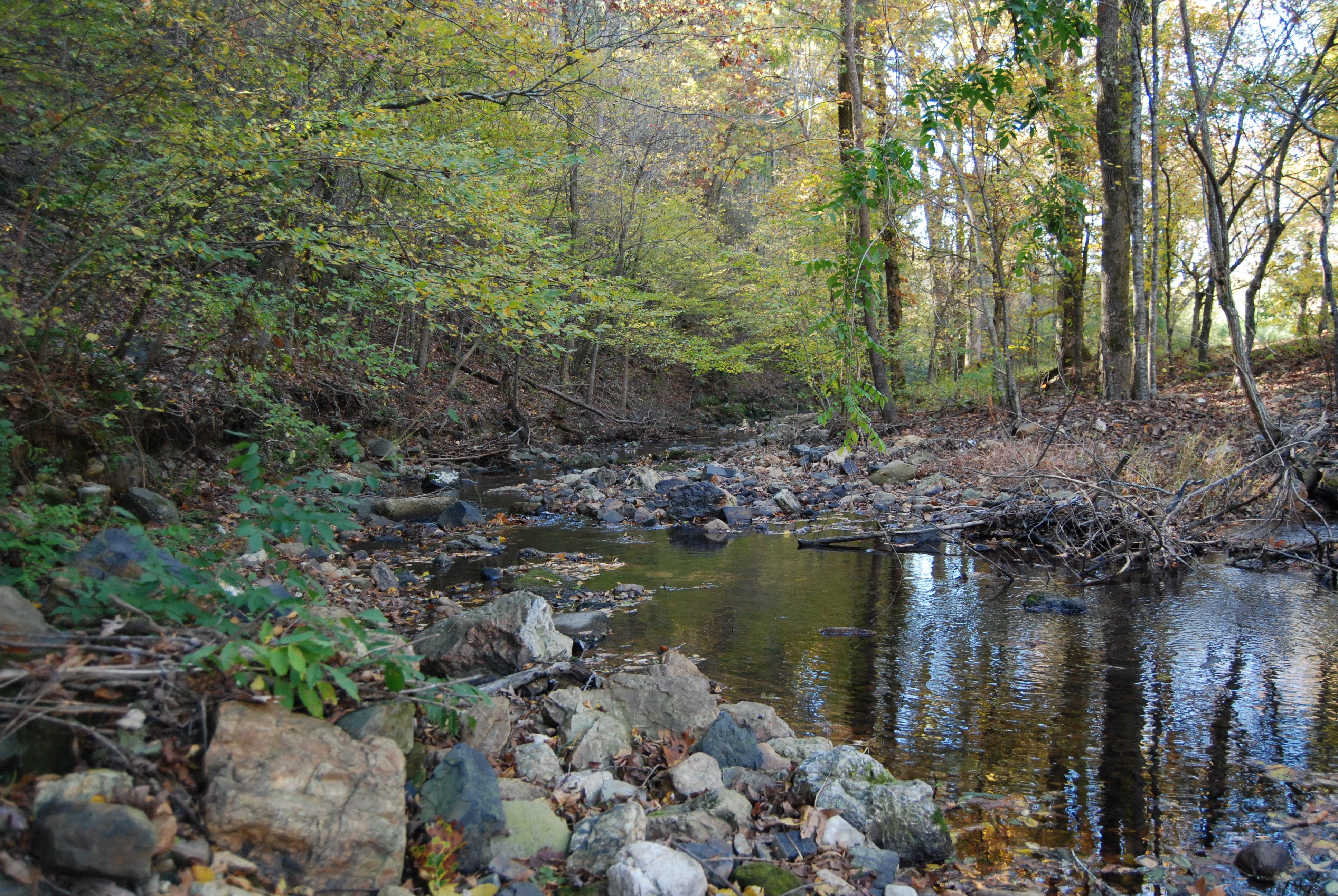 Jones Creek at the low water crossing