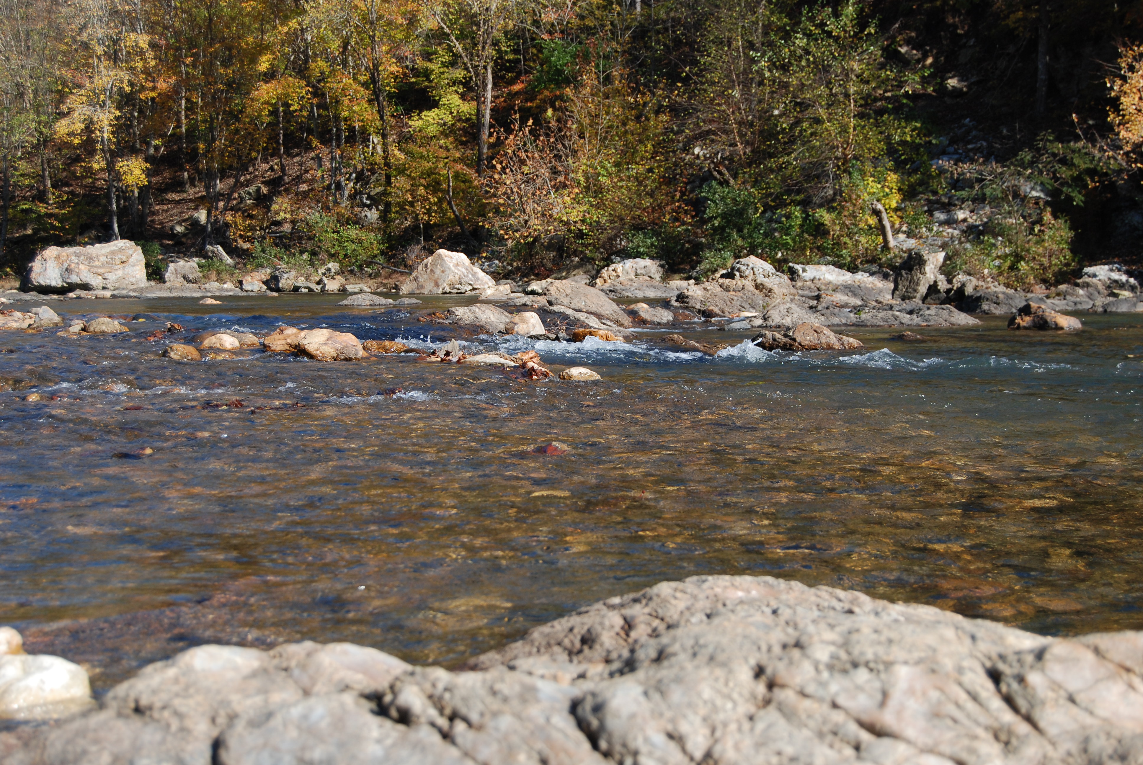 Little Mo River at Albert Pike Rec Area